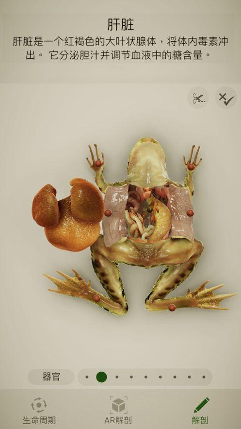Froggipedia安卓免费版图片1