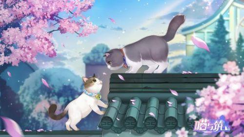 喵与筑手游评测:创造猫咪温暖世界[多图]图片1