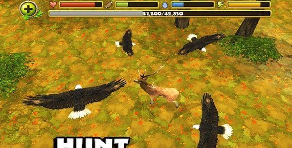 猎鹰模拟器3D最新版下载破解版图0