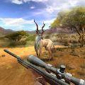 狩猎竞赛无限金币中文破解版