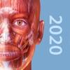 2020肌肉与运动机能学破解版APP安卓下载