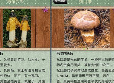 蘑菇鉴别软件安卓APP下载安装图片1
