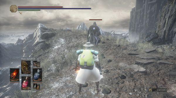 宝可梦之魂游戏官方版图片1