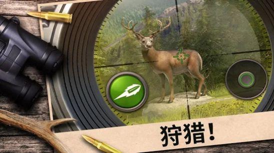 狩猎竞赛无限金币中文破解版图3
