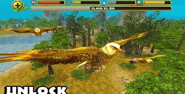 猎鹰模拟器3D最新版下载破解版图片1