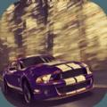 全民老司机游戏无限金币破解版