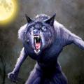 可怕的狼巨头森林怪物游戏安卓版