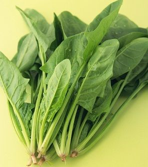 宋朝人吃火锅时可以吃到哪些蔬菜 宋朝人吃火锅可以吃到菠菜吗[多图]图片3