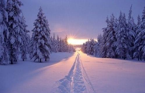 太阳天里真的能大雪纷飞吗蚂蚁庄园 蚂蚁庄园艳阳天答案[多图]图片3