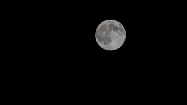 月亮的圆缺变化是由月球的自转还是公转引起的蚂蚁庄园12.18日答案[多图]图片3