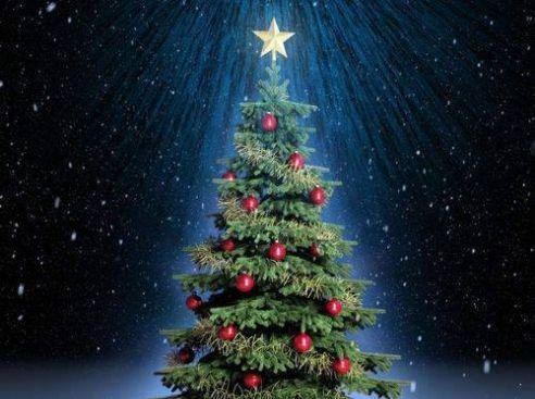 满屏都是圣诞树特效应用下载官方版图3