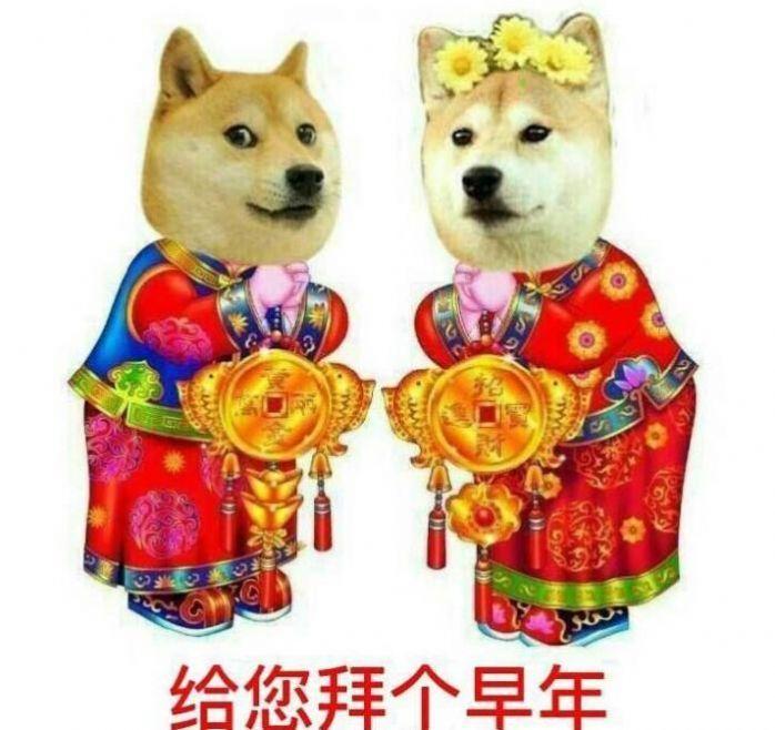 狗给您拜个早年表情包高清图片分享地址入口图0