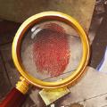 脑洞解谜大侦探游戏安卓最新版