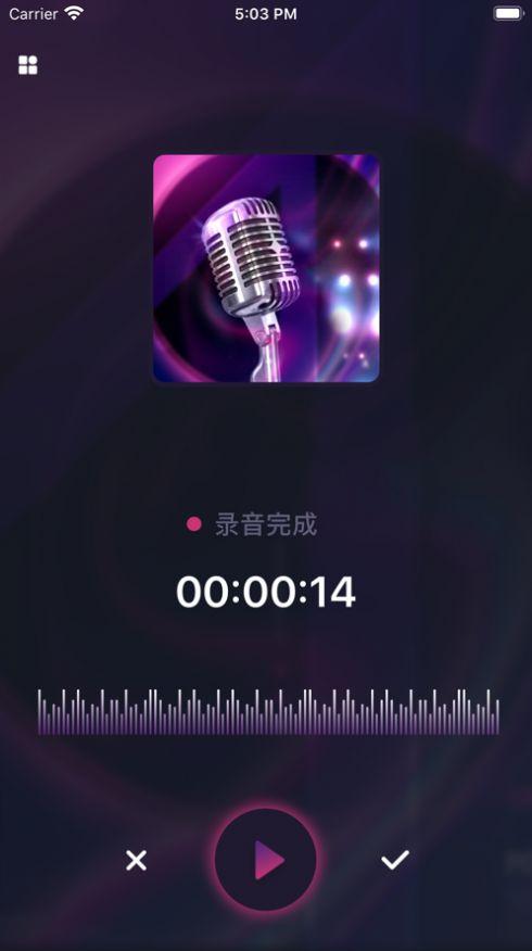 炫音变声器APP安卓版图2