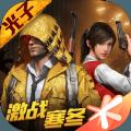 和平精英腾讯游戏国际版下载