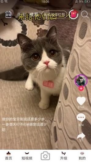 暖暖视频免费大全视频中文字幕2021最新版图3