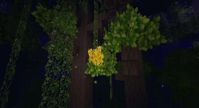 迷你世界雨林版本什么时候更新 雨林版本更新了什么内容[多图]图片2